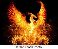 Phoenix 1