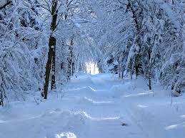 Maine snowy road